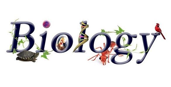 General series of chemistry. Biology clipart biology major