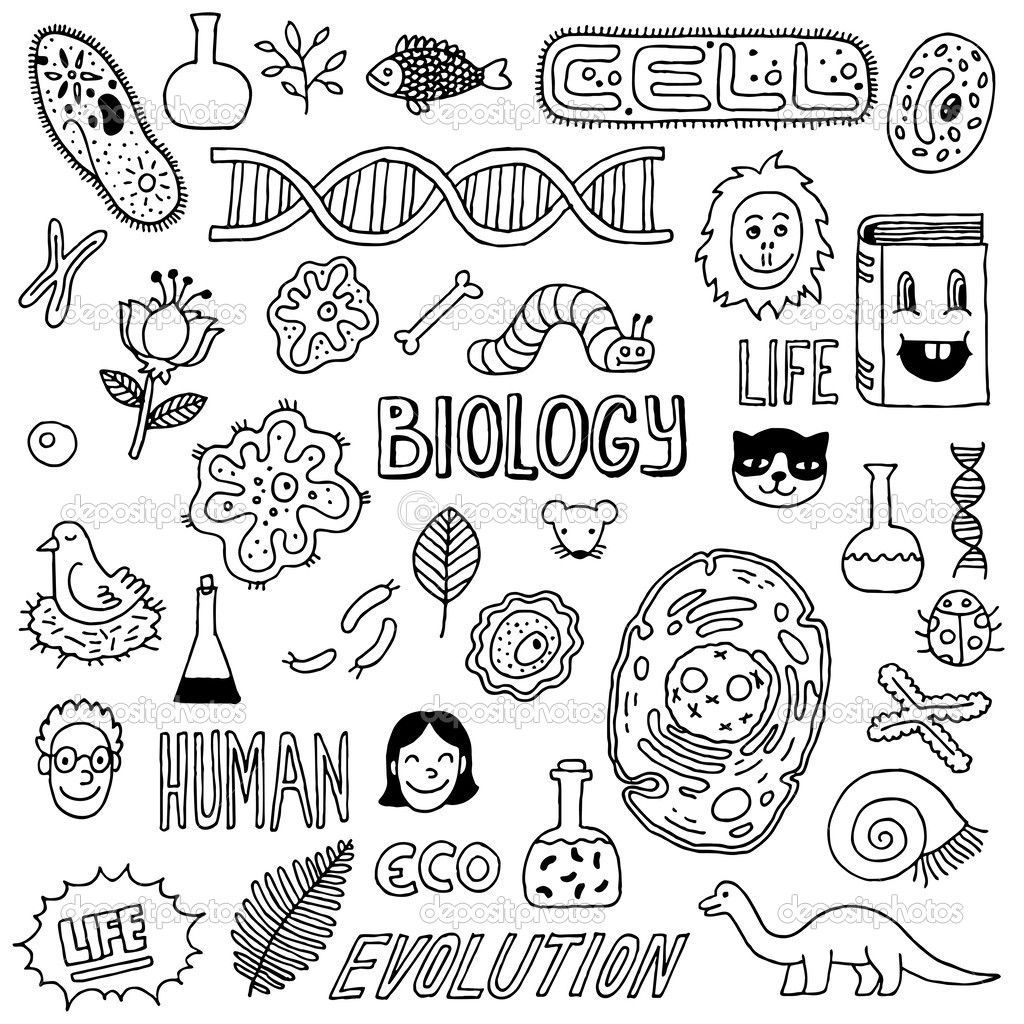 Doodles hand drawn illustration. Biology clipart black and white