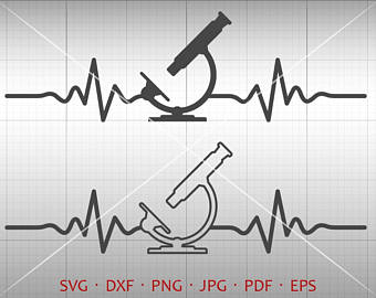 Etsy heartbeat microscope svg. Biology clipart calligraphy