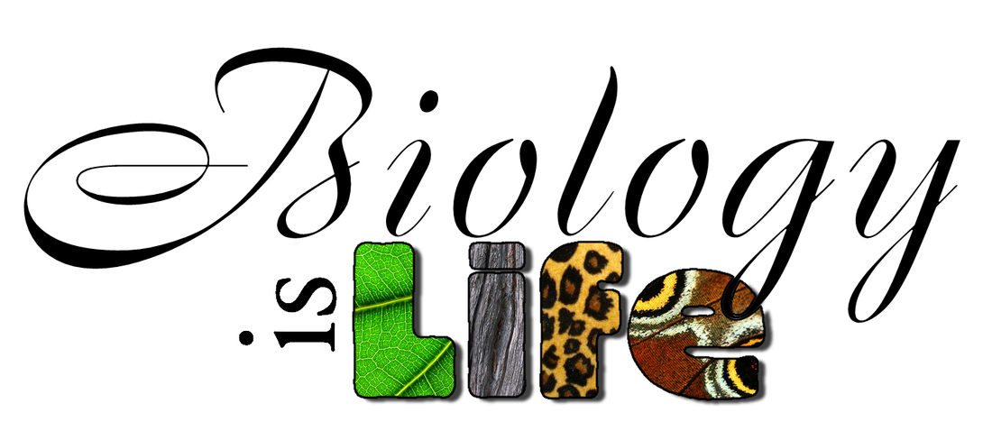 Biology clipart calligraphy.  collection of community
