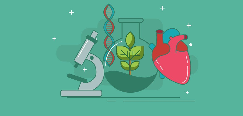 Biology clipart clip art. I love google search