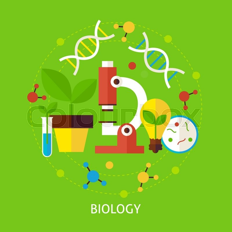 Collection wildlife google search. Biology clipart creative