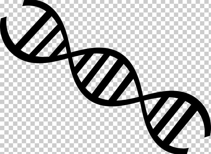 Biology clipart double helix. Dna nucleic acid genetics