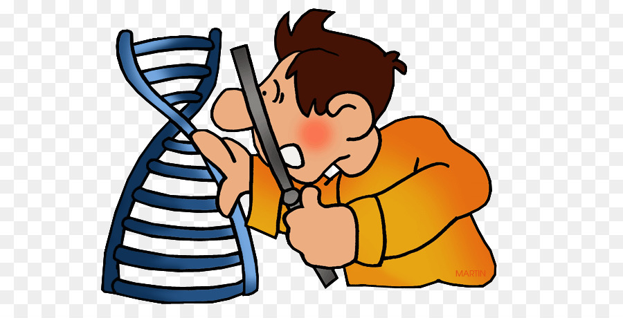 Biology clipart double helix. Dna nucleic acid gene