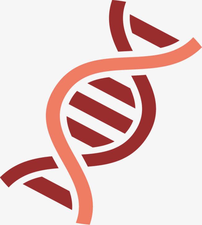 Dna biological png and. Biology clipart double helix