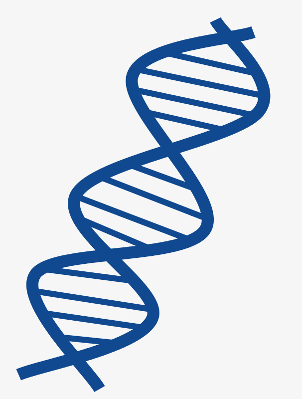 Blue dna plan flat. Biology clipart double helix