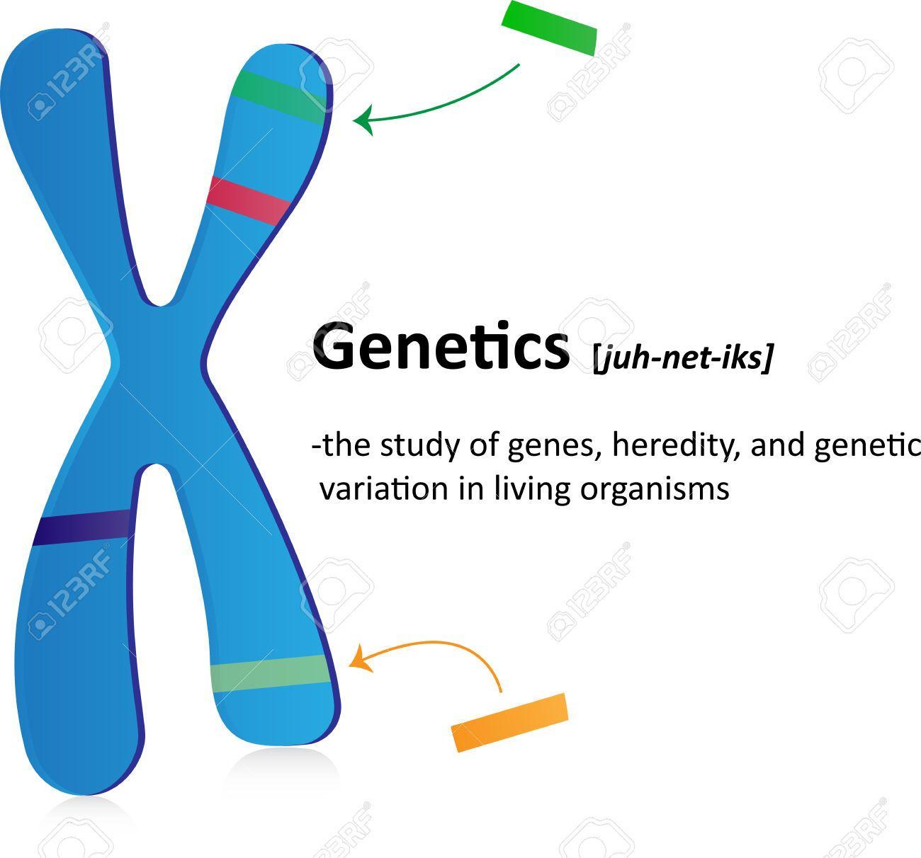 Biology genetic engineering
