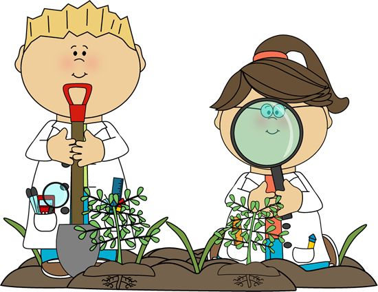 Biology clipart kid.  best school images