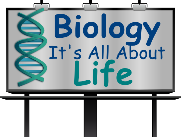 Clip art at clker. Biology clipart life science
