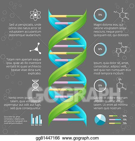 Vector illustration infographic template. Biology clipart medical