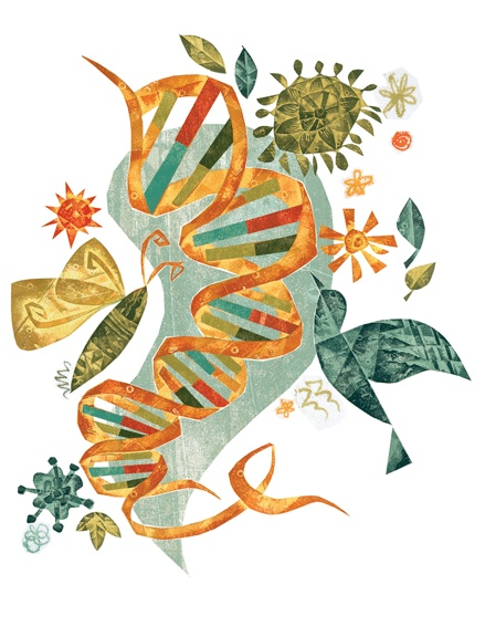 Biology clipart molecular biology.  best images on