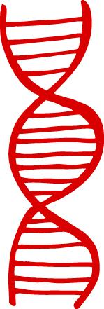 Biology clipart molecular biology. Gene panda free images