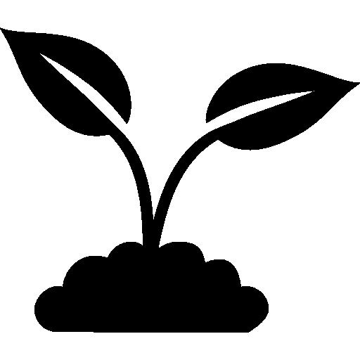 Biology clipart plant biology. Links biolympiads