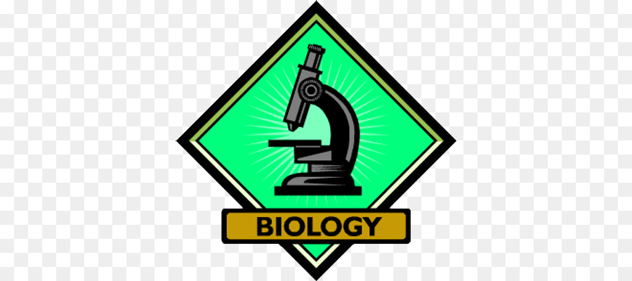 Green background yellow . Biology clipart transparent