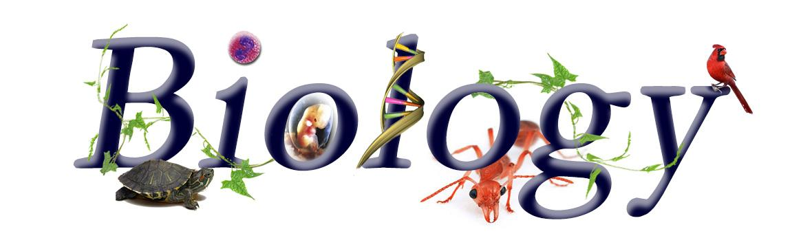 Biology clipart word.  collection of cover