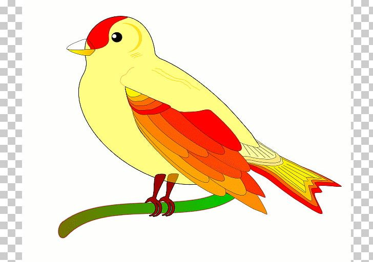 Flight animation png cliparts. Bird clipart animated