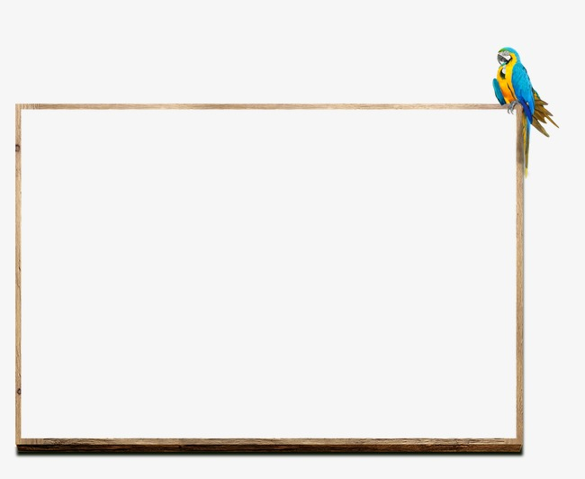 Bird clipart borders. Creative frame png and