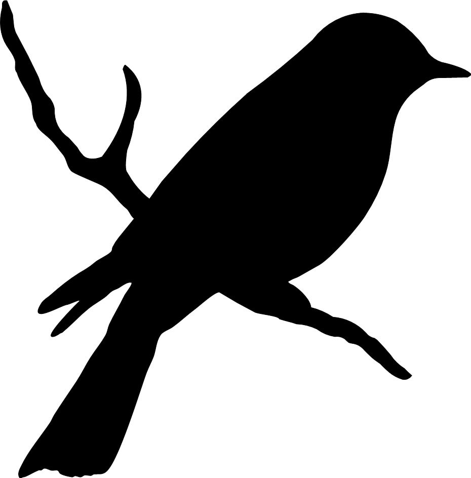 Bird clipart branch. On a birds silhouette