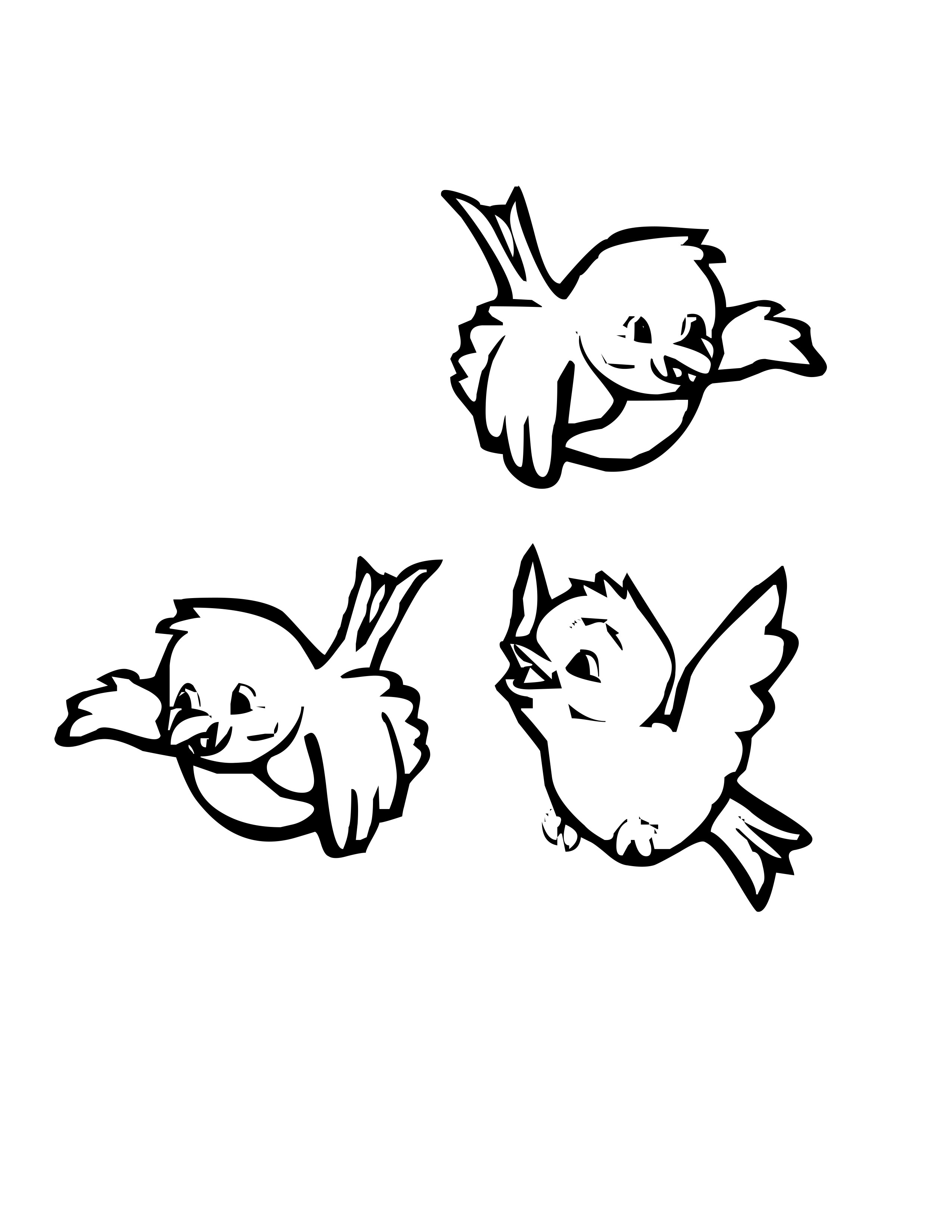 Picture of a panda. Bird clipart coloring