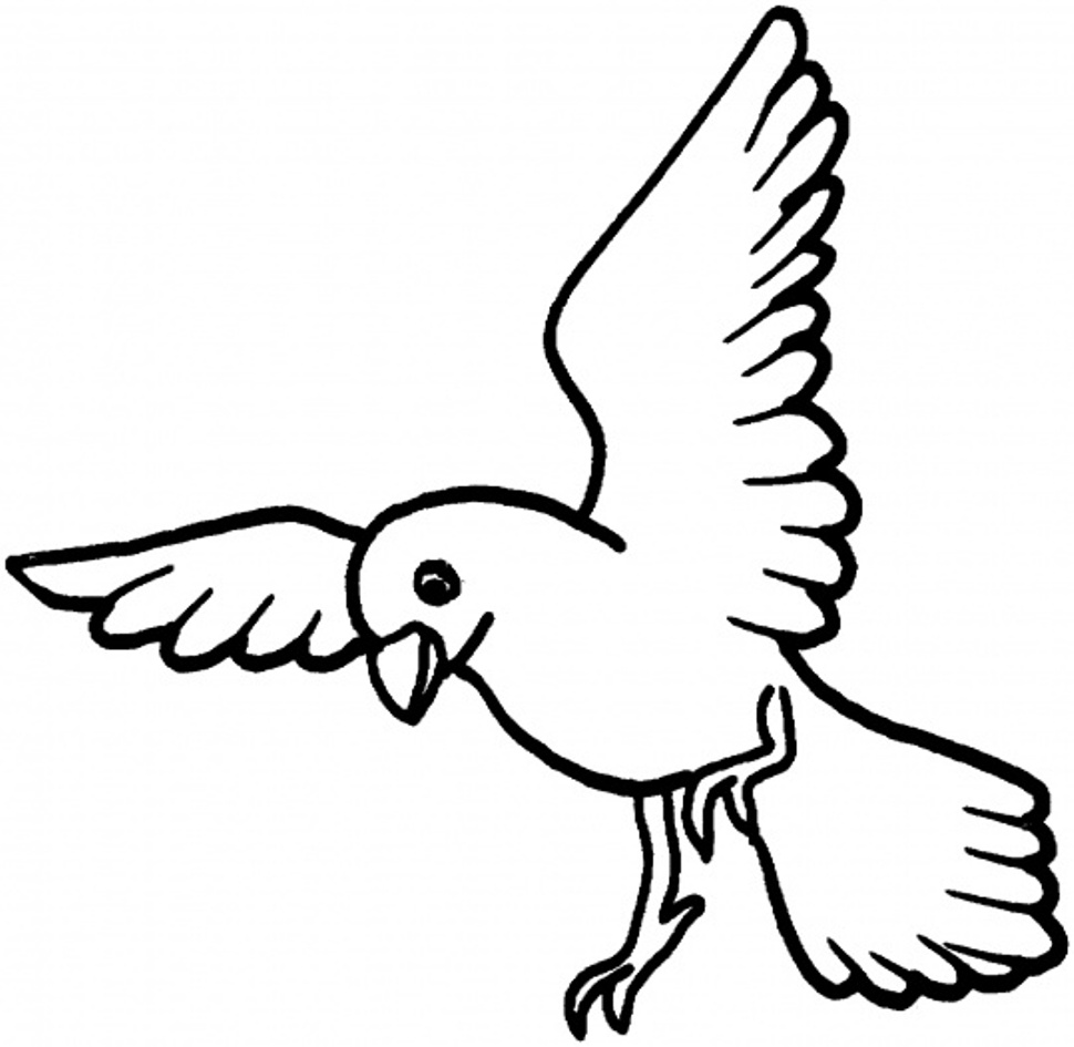 Pages for kids birds. Bird clipart coloring