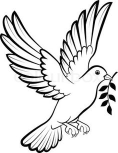 Birds drawings best pinterest. Bird clipart dove