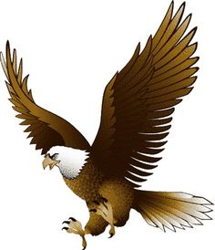 different types of. Eagles clipart