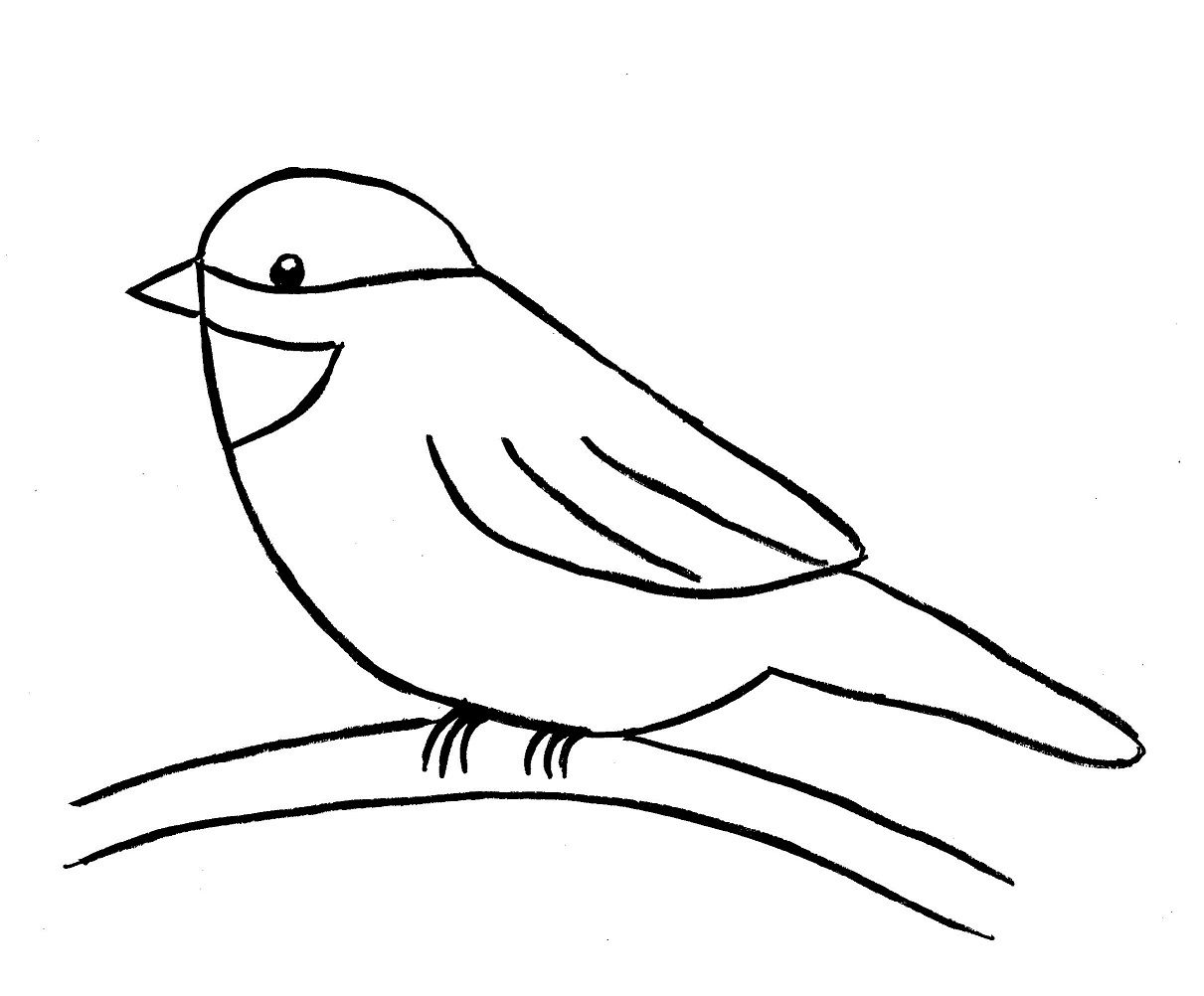 Bird clipart easy. Birds pictures drawing at