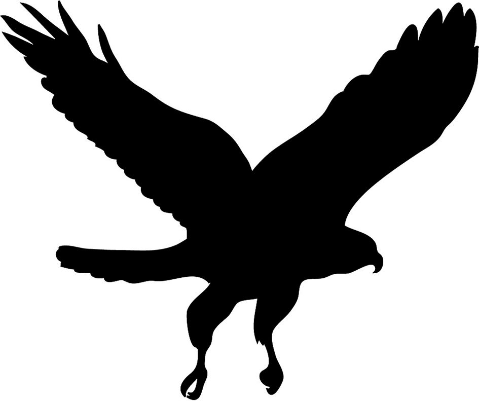 Bird silhouette at getdrawings. Birds clipart falcons
