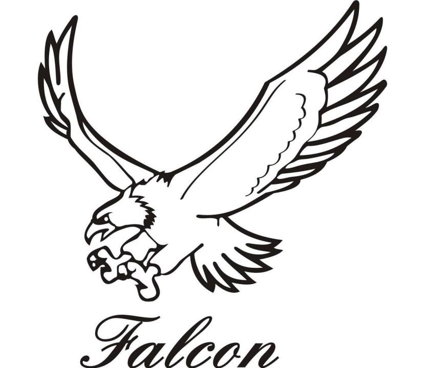 Falcon clipart stencil. Free download clip art