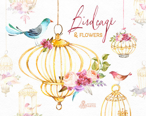 Cage clipart gold bird. Birdcage flowers watercolor floral