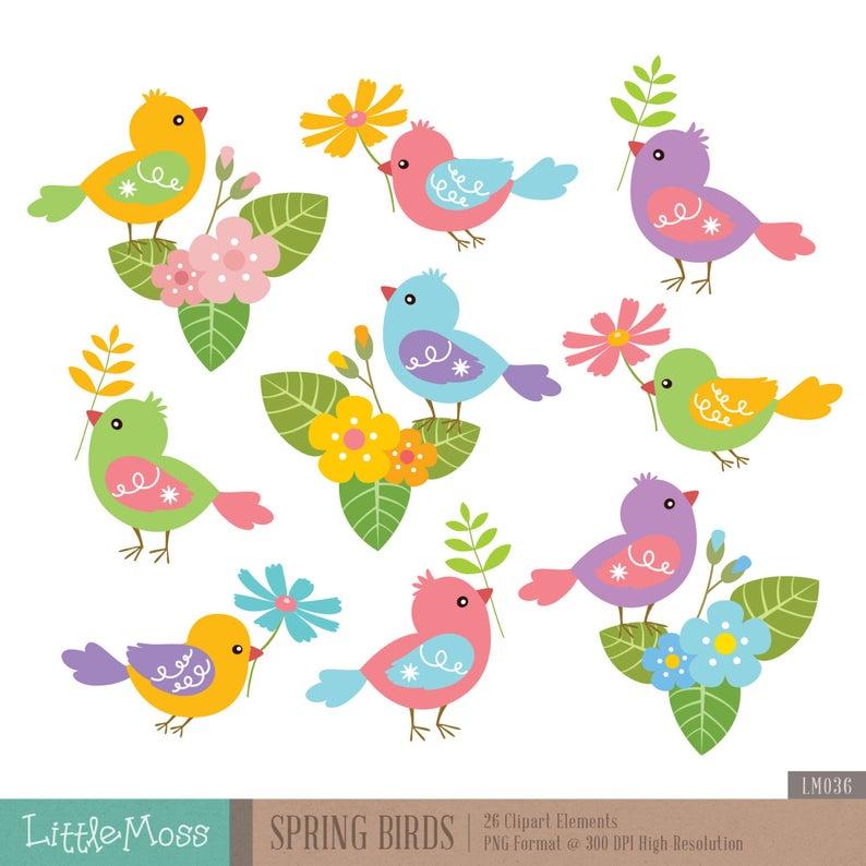 Spring birds digital . Bird clipart flower