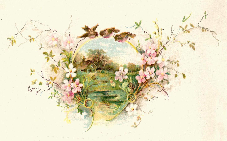 Birdhouse clipart vintage. Bird graphic birds flower