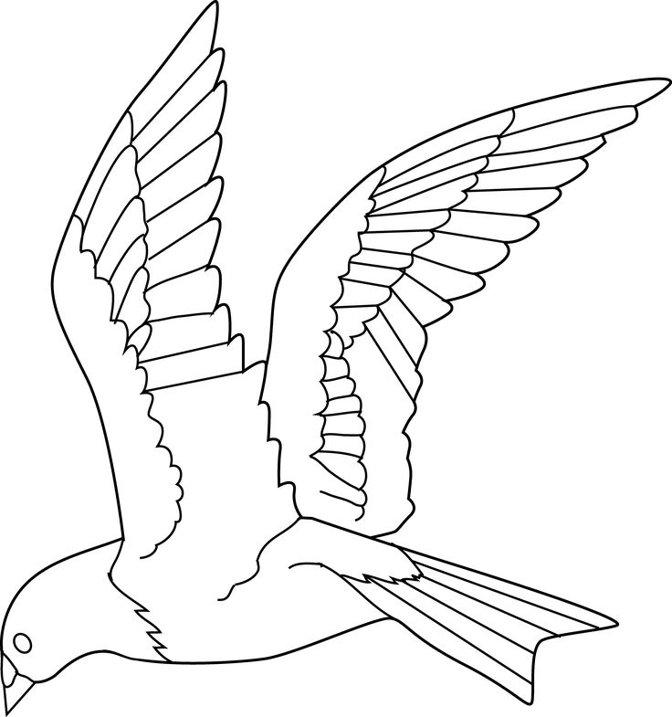 Flying out of cage. Bird clipart magical
