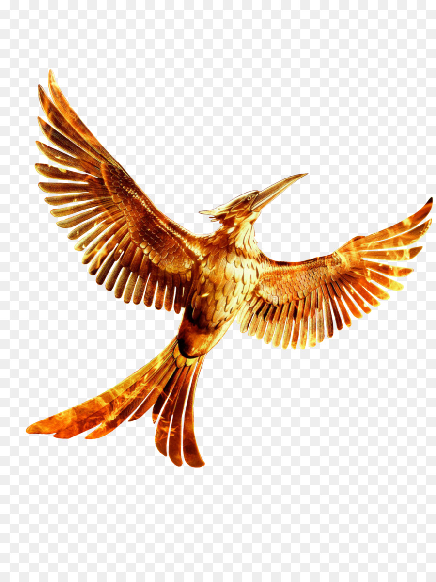 Bird clipart mockingjay. The hunger games youtube
