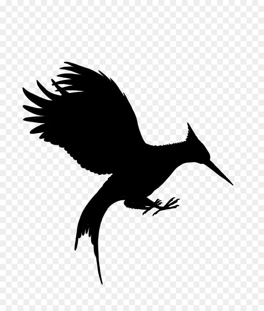 Wing silhouette . Bird clipart mockingjay