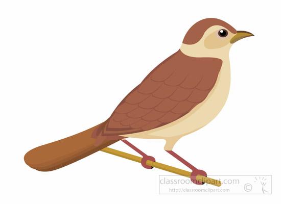 Birds clipart nightingale. Top clip art free