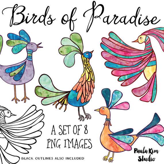 Of paradise clip art. Birds clipart rainbow