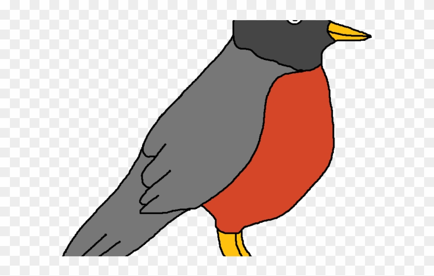 Cardinal clipart red robin. Clip art png download