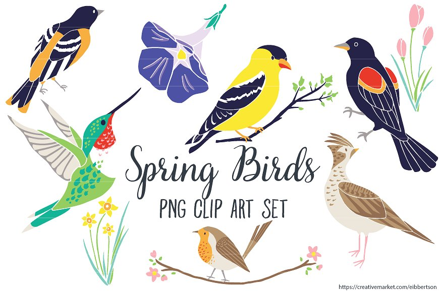 Bird clipart spring. Clip art illustrations creative