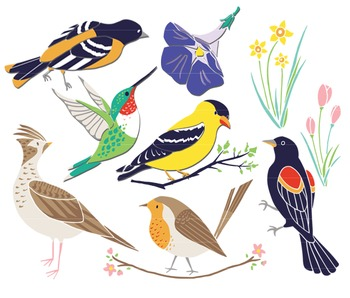 Birds clip art . Bird clipart spring
