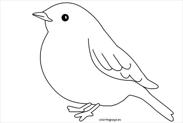 Luxurious and splendid of. Bird clipart template