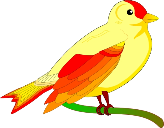 Free cliparts download clip. Bird clipart template