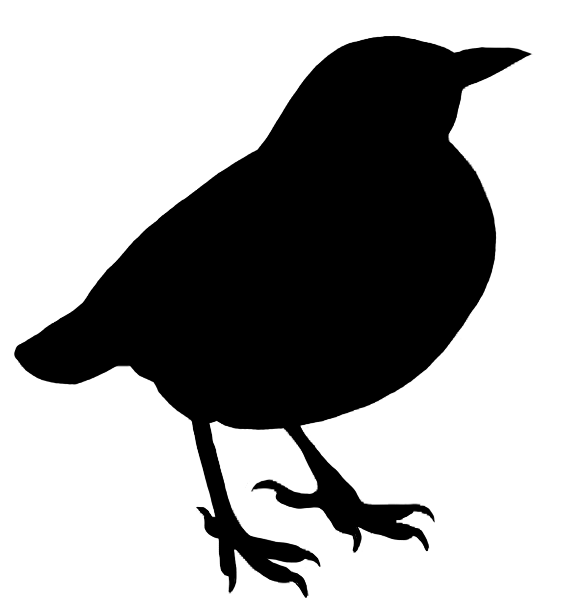 Silhouette png stickpng. Bird clipart transparent background