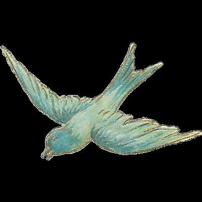 Transparent png stickpng sketch. Bird clipart vintage