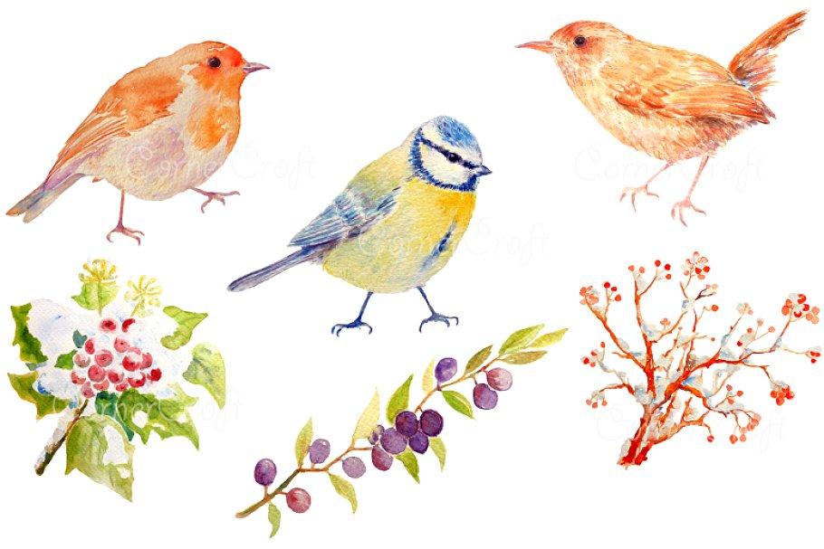 Birds clipart watercolor. Bird blue tit wren