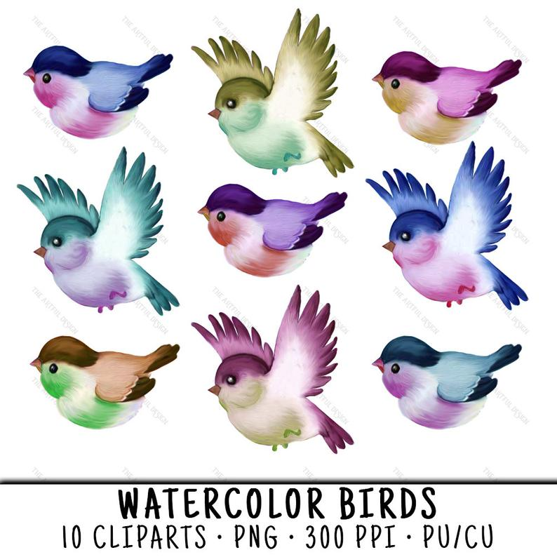 Bird png clip art. Birds clipart watercolor