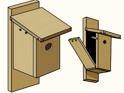 Birdhouse clipart building. Nestwatch features of a