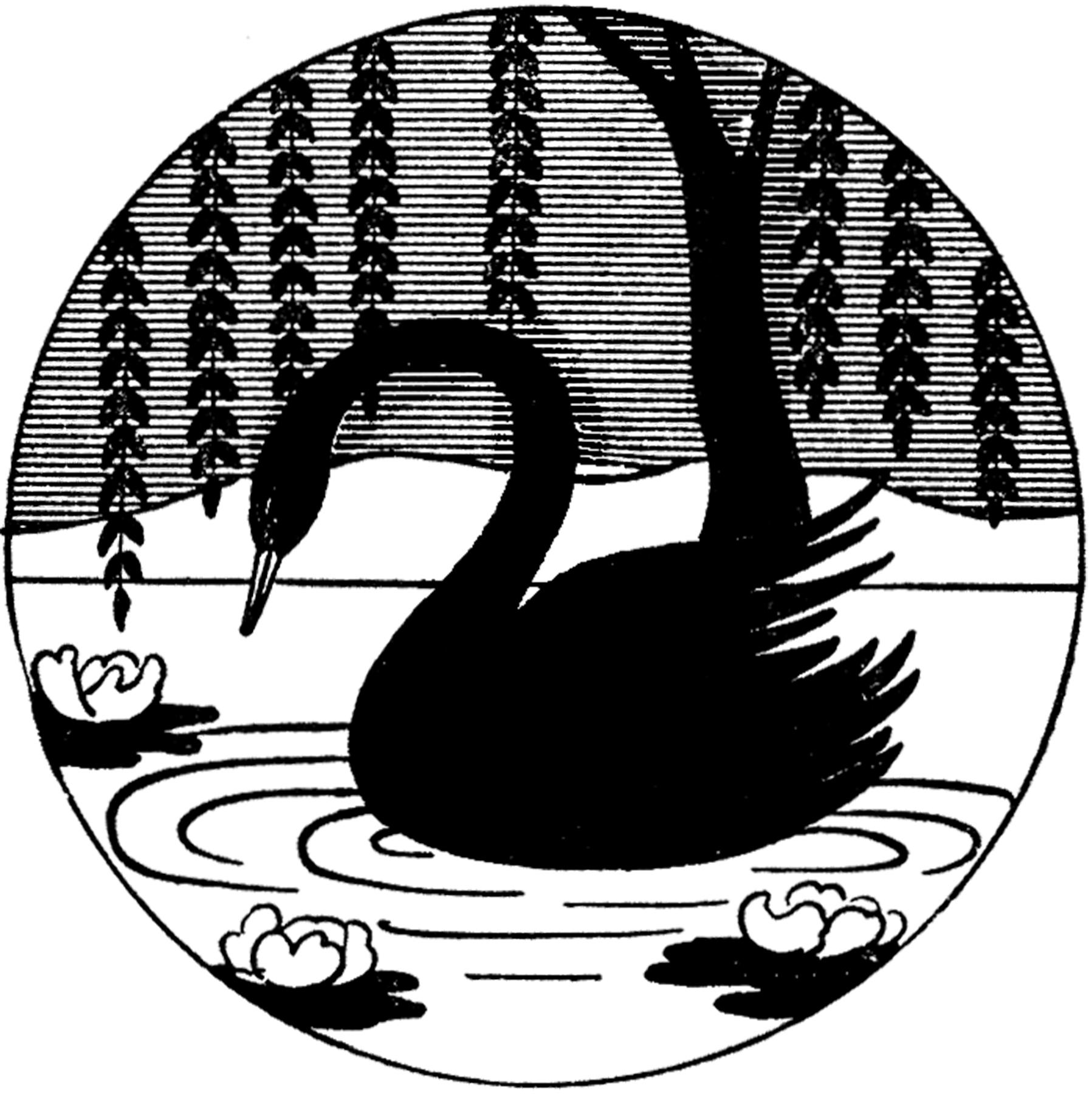 Birds clipart black swan. Vintage image silhouette the