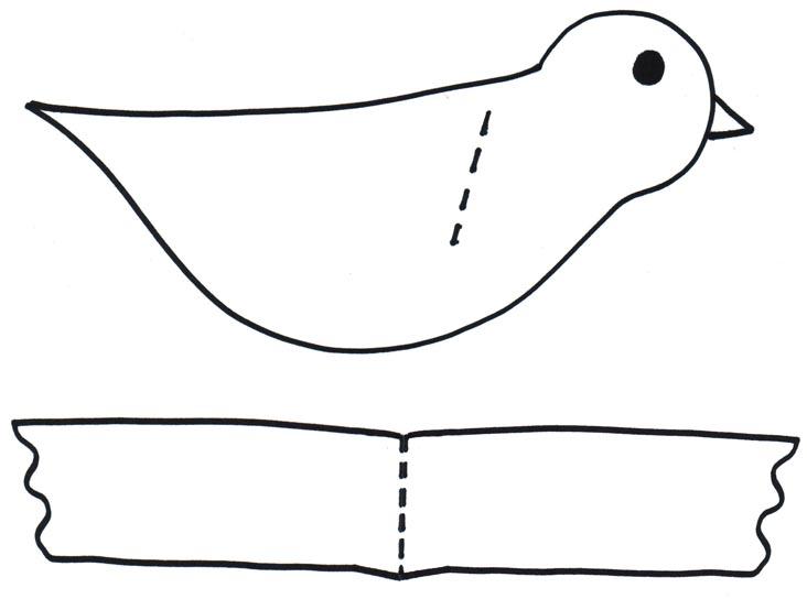 Birds body