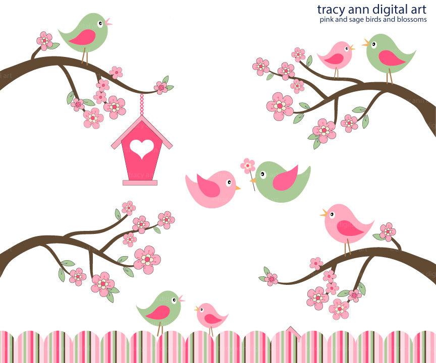 Cherry blossom . Birds clipart branch